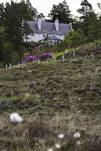 Duirinish Lodge, Plockton, Estate